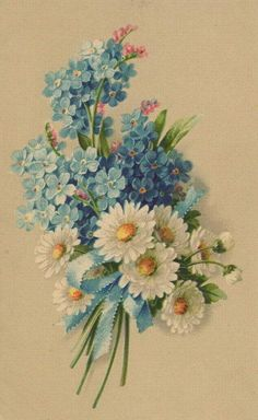 Love this combination of Daisies & Forget-Me-Nots!