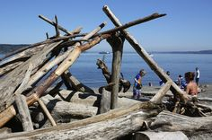 $99 Road Trip to zoo, fort, beaches and forest of Tacoma's Point Defiance