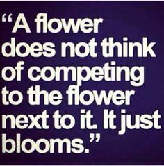 Bloom....