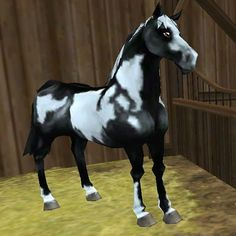 star stable   Pattern: Tovero Cost: 790 Star Coins