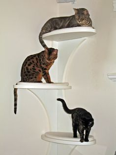 Customer Image Gallery for The Refined Feline Catemporary Cat Corner in White