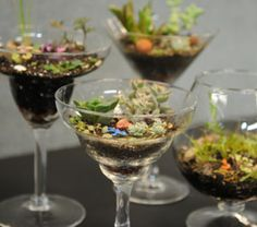 Mini-gardens in thrift-store wineglasses!  (Instructions in link below)
