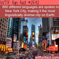 The most diverse city in the world  |  Not surprising!!  No one seems to speak English in NYC, lol