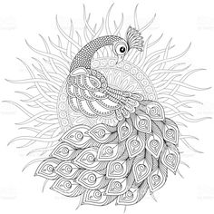 Adult antistress coloring page. Black and white hand drawn doodle. Adult antistress coloring page. Black and white hand drawn doodle. Peacock Coloring Pages, Abstract Coloring Pages, Mandala Coloring Pages, Coloring Book Pages, Pattern Coloring Pages, Peacock Drawing, Peacock Wall Art, Peacock Outline, Peacock Images