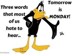 Daffy Duck, Tomorrow is Monday