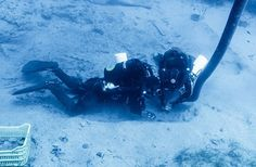 Antiquities Found on Shipwreck That Carried Elgin Marbles.  Lord Elgin collected other Greek antiquities besides the sculptures taken from the Parthenon, finds a new survey at the site of the British ship Mentor, which sank off southern Greece more than 200 years ago carrying marbles from the Acropolis to London.