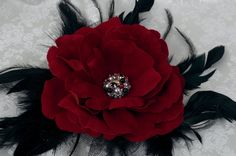 Large Red Velvet rose and Black feather hair corsage.