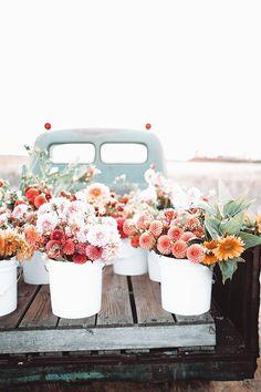 Cut Flowers, Wild Flowers, Beautiful Flowers, Flower Truck, Flower Farm, Spring Aesthetic, Flower Aesthetic, Jolie Photo, Flowers Nature