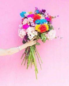 """"""" A primavera é um jeito da natureza dizer que é hora de renascer. """" Bom dia Primavera! @OlhardeMahel @mahelinbox #primavera #bomdia #flores #renascimento #reflexão #movimento #aprendizado #sextafeira #olhardemahel #fpolhares #flowers #goodmorning #friday #thinking #wayoflearning #learning http://ift.tt/2fgOSgq"""