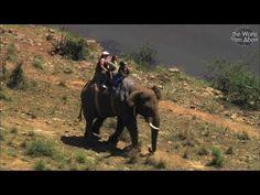 International Biodiversity Day kruger to canyons biosphere SA 2008 xvid - YouTube
