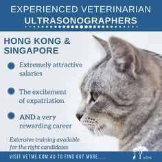 FT Veterinarian Ultrasonographers, Hong Kong & Singapore: Ideally looking for reasonably experienced ultrasonographers, however, extensive training will be provided as necessary in order to support the right candidates. Salaries are extremely attractive – plus the excitement of expatriation on top of a very rewarding career and a great chance to see a lot and learn a lot fast! .