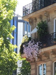 Balcon parisien fleuri à l'angle du boulevard Saint-Germain et de la rue des Fossés Saint-Bernard, Paris 5e (75)