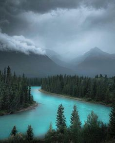 Rainy days in the Canadian Rockies