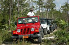 Explore the vibrant community of Freeport on this all inclusive Jeep tour, including lunch, beach time