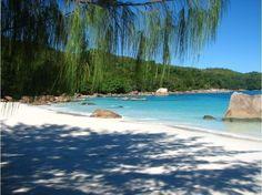 Seychelles, plage de Praslin. A 44 km de Mahé, c'est la deuxième plus grande île des Seychelles. En dehors de ses plages paradisiaques, elle est célèbre pour sa vallée de Mai, inscrite au patrimoine mondial de l'humanité par l'UNESCO depuis 1983.