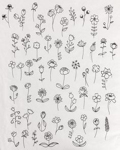 Flower Doodles Discover 30 Ways to Draw Flowers A list of 30 ways to draw flowers - From roses poppies tulips wildflowers and more. Learn how to draw flowers using simple line drawings. Simple Flower Drawing, Simple Line Drawings, Floral Drawing, Flower Art, Lotus Flower, Simple Flower Tattoo, Flower Crafts, Flowers Illustration, Illustration Tattoo
