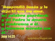 Compartamos la Palabra de Dios: Respondió Jesús y le dijo: El que me ama, mi palab...