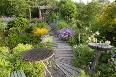 This tiny garden has been cleverly designed to be big in colour and impact  - countryliving.co.uk