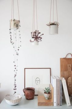 Simple and delicate hanging plant display