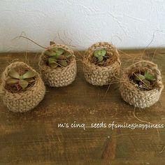 エアープランツ - Diy Crafts - Best K - Diy Crafts - Best Knitting Crochet Plant Hanger, Macrame Supplies, Succulent Gifts, Crochet Home Decor, Macrame Art, Hanging Plants, Cute Crochet, Sisal, Flower Pots