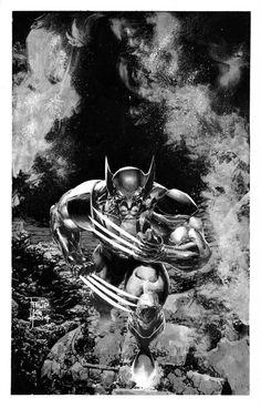 Philip Tan - Wolverine