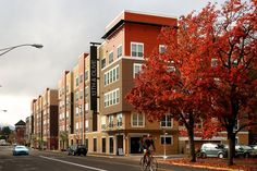 13th and Olive - Brand new student housing in the heart of downtown Eugene! Call today to schedule your tour 541.685.1300