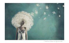 Porpuesta Estética: Gaby Herbstein toma la fotografía como medio expresivo para generar conciencia, su obra da cuenta de su preocupación por el bienestar universal, por la preservación de la belleza del planeta y de inquietudes que surgen a partir de sus propias experiencias y búsqueda espiritual.