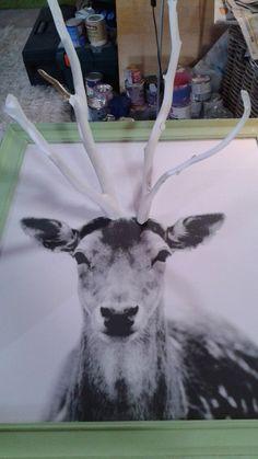 Ketting-hert, uit Rok bij Vitaya