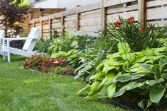 EXTERIOR: garden, fence, plus different types of plants in post