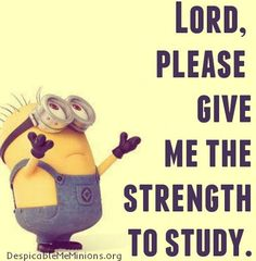 If there is one proof that the way we communicate has transformed significantly it is through the presence of minion memes.I think now you are free and find some memes for fun.We collected some Minions Memes school.Who are very helpful for making a laugh. Cute Minions, Minion Jokes, Minions Quotes, Funny Minion, Minion Stuff, Exam Quotes Funny, Funny Jokes, Hilarious, Funny Texts