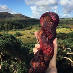 Celebrating Autumn with some seasonal shades 🍂🍁🍂 Donegal, Hand Dyed Yarn, Leicester, More Photos, Autumn Leaves, Fingerless Gloves, Arm Warmers, Falling Leaves, Sock
