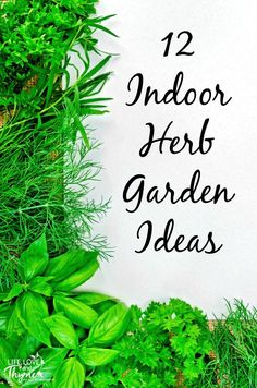 12 Indoor Herb Garden Ideas - Grow your own food right in the comfort of your own kitchen with these ideas for growing your own indoor herb garden.: