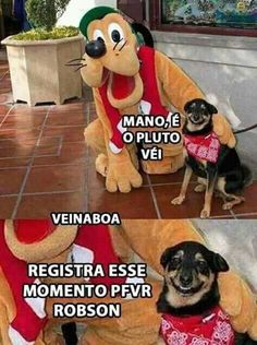 Eu tb amo o pluto Best Memes, Funny Memes, Great Jokes, Funny Happy, Cute Funny Animals, Funny Posts, Haha, Geek Stuff, Dogs
