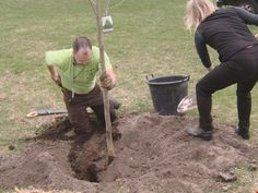 Grow with KARE: Tips for picking, planting trees