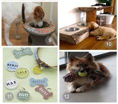» 25 Pet Solutions You Never Knew You Needed My Home Life | Decor, Design and DIY
