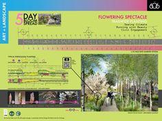 Pheno Design Board