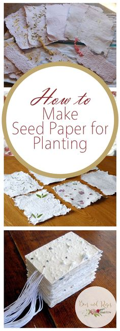 How to Make Seed Paper for Planting - Bees and Roses