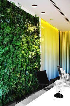 Vertical Garden by GreenTag Hertz - Rent a Car Location: Athens, Greece Designer: Karolos Chanikian www.greenwayshellas.gr