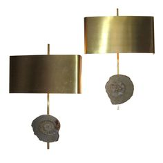 Pair of Brass and Fossils Sconces.