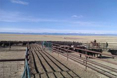 Wyoming Cattle Ranch Cattle Ranch, Ranches For Sale, Ranch Life, Land For Sale, Southern Living, Wyoming, Traveling, Industrial, Board