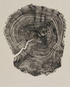 Wood Cut by Bryan Nash Gill