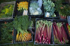 @The Chef's Garden veggies!  @Veggie U 2012 Food & Wine Celebration - , via Flickr.