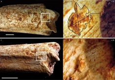 Los homínidos fueron un banquete para las hienas hace 500.000 años | Ciencia | EL MUNDO