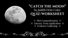 reflection catch moon judith oriz cofer In catch the moon, ortiz cofer introduces luis cintron,  ortiz cofer says that in her first novel,  judith ortiz cofer: interview: home catalog about us.