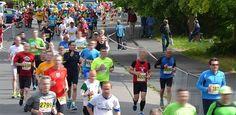 Teilnehmerrekord beim Nordhessencup-Lauf in Wolfhagen – immo runners waren mit am Start