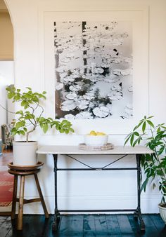 A Welcoming Fort Greene Apartment | A Cup of Jo, crock with tree, contrasting tray underneath