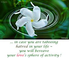... in case you are #tabooing #hatred in your #life ~ you will bereave your #love's sphere of #activity !