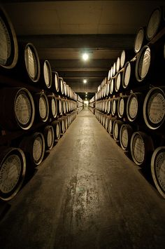 A whole lot of Whisky aging at the distillery Whiskey Brands, Cigars And Whiskey, Bourbon Whiskey, Scotch Whisky, Wine Cellar Design, Wine Design, Wedding Photo Pictures, Whiskey Wednesday, Whiskey Distillery