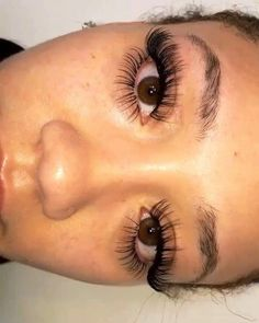 Individual Lashes | Car Eyelashes | Best Lashes For Lash Extensions 20190814