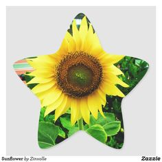Sunflower Star Sticker Star Stickers, Custom Stickers, Different Shapes, Party Hats, Activities For Kids, Art Pieces, Diy Projects, Vibrant, Scrapbook